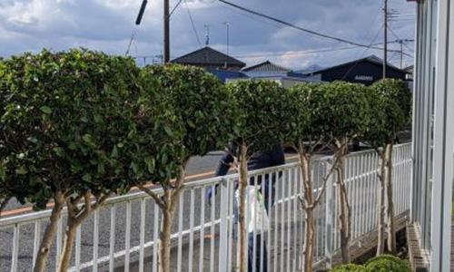 県内4拠点 企業様敷地内の除草・植栽剪定04