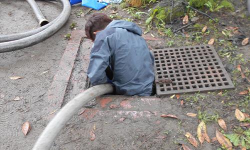 浜松市公園内の池掃除04.jpg