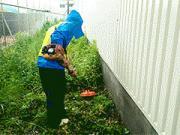 袋井市内事業所敷地 除草及び除草剤散布